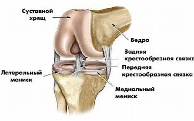 Подвёртывается нога в коленном суставе хрустит челюсть и суставы