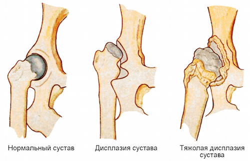 пептиды и заболевания суставов