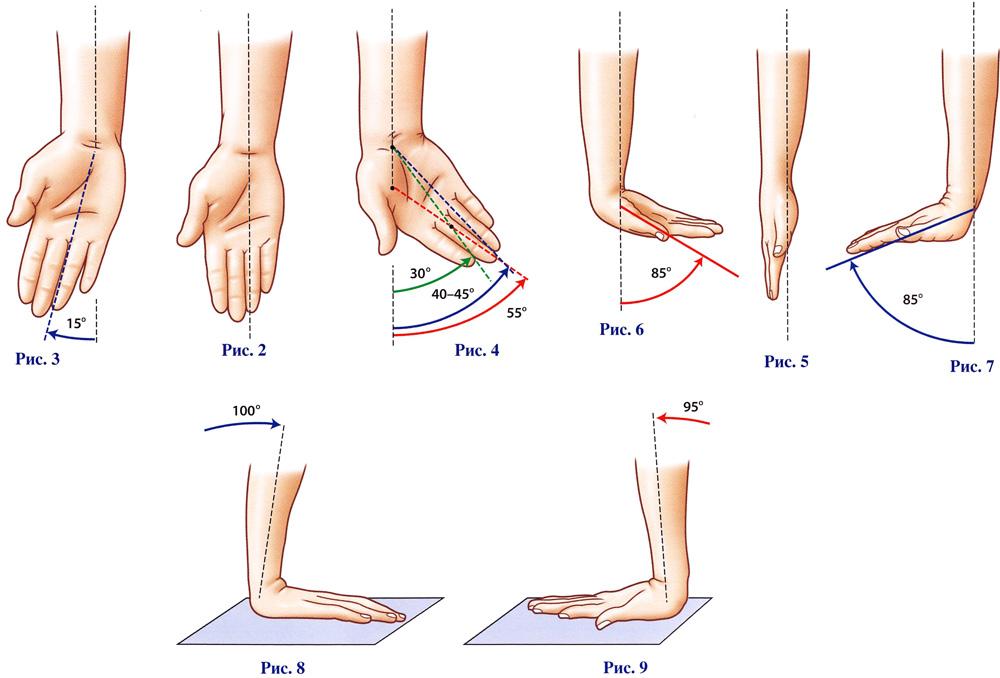 анатомия движение суставов