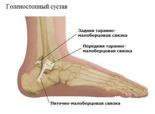 Опух голеностопный сустав лечение список очередников на эндопротезирование коленного сустава по амурской области благовещен