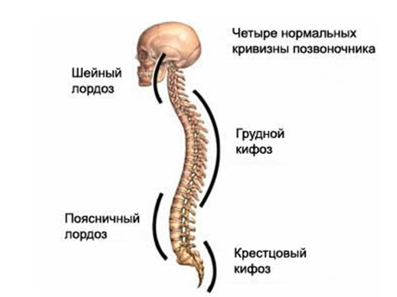 Как исправить искривление позвоночника у грудничка