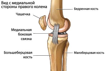 разрыв связок плечевого сустава лечение народными средствами