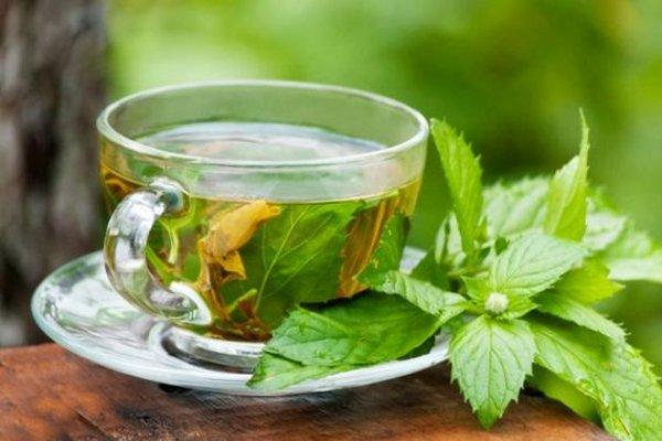 Ученые рассказали, в каких случаях вреден зеленый чай