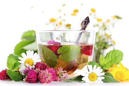 цветы, листья, чашка