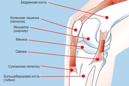 Операция тазобедренного сустава нижний новгород