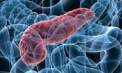 Ученые нашли способ вылечить раковые клетки поджелудочной железы