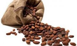 Какао сохранит молодость сердца