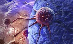 Ученые нашли способ лечить рак вирусом гепатита