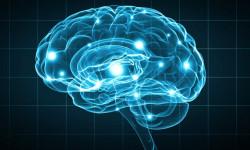 Глубокое стимулирование мозга замедляет развитие болезни Паркинсона