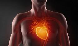 Классификация, симптомы и лечение стеноза аорты и аортального клапана
