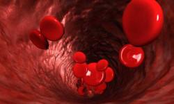 В Новосибирске ученые предложили новый тип диагностики рака