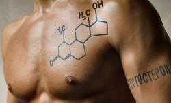 Низкий уровень тестостерона приводит к хроническим заболеваниям