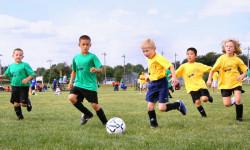 Занятия спортом в детстве снижают риск заболеваний сердца в зрелом возрасте