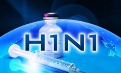 Первые случаи «свиного гриппа» зафиксировали в Липецке
