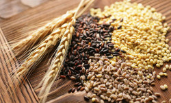 Ученые назвали цельное зерно противораковым продуктом