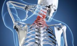 Рентгенография позвоночника: подготовка и результаты исследования