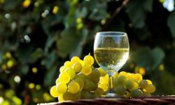 Ученые назвали белое вино опасным канцерогеном
