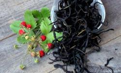 Китайские ученые обнаружили, что иван-чай лечит депрессию