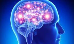 Сластены подвержены повышенному риску развития болезни Альцгеймера