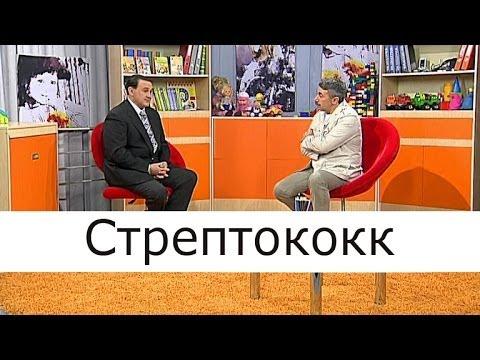 Стрептококк - Школа доктора Комаровского