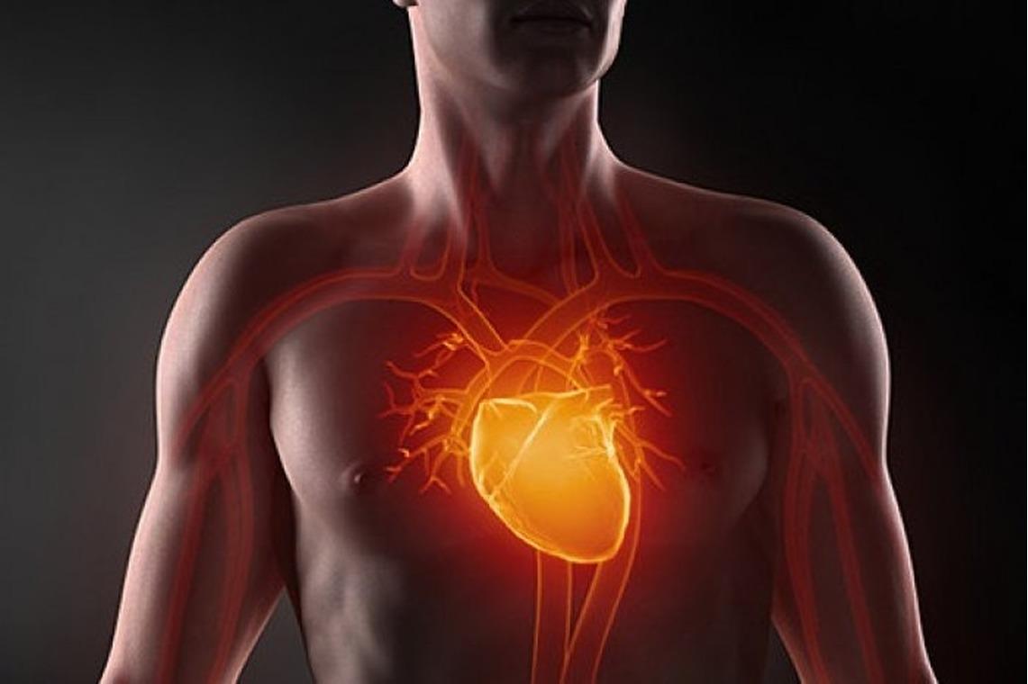 Порок митрального клапана сердца