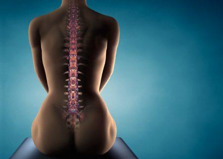 женская спина