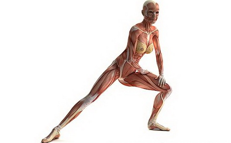 Восстановление суставов и связок народными средствами