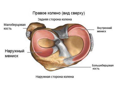 Мениски