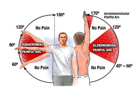Движение в плече